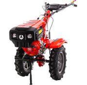 Motocultor Rotakt RO10R, benzina, 10 CP, model 2020