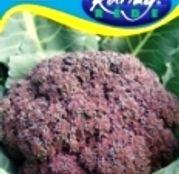 Seminte Broccoli Miranda 2g