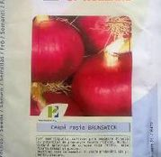 Seminte Ceapa rosie Brunswick 25g