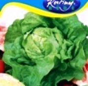 Seminte salata Safir 2g