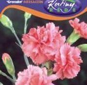 Seminte flori Garoafe Grenadin (Dianthus caryophyllus) roz 0,25g