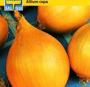 Seminte Ceapa alba Wolska 3g
