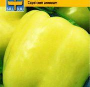 Seminte Ardei gras Dariana-Export 0.5g