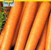 Seminte morcovi Nantes 2 (3g, 30g)