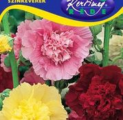 Seminte flori Nalba de gradina (Alcea rosea) amestec de culori 1g