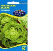 Seminte salata Attrakció 3g