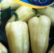 Seminte ardei gras Jász F1 20 seminte