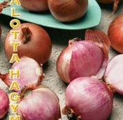 Arpagic ceapa Esalota/Hasma 10buc