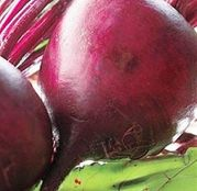 Seminte sfecla rosie Detroit / Globe 250 g
