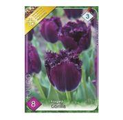 Bulbi de flori Lalea Fringed Gorilla 8buc