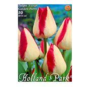 Bulbi de flori Lalea Garden Party/Page Polka 10buc