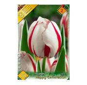 Bulbi de flori Lalea Happy Generation 10buc
