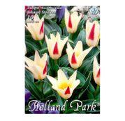 Bulbi de flori Lalea Johann Strauss 10buc