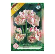 Bulbi de flori Lalele Belicia 8 buc