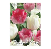 Bulbi de flori Lalele Duo Pink & White 10 buc