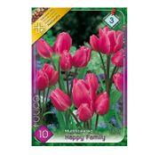 Bulbi de flori Lalele Happy Family 10 buc