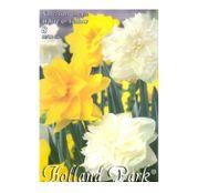 Bulbi de flori Narcisa Duo Double White & Yellow 8buc