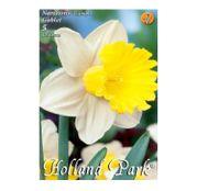 Bulbi de flori Narcisa Goblet 5buc