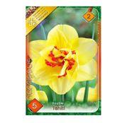 Bulbi de flori Narcisa Tahiti 5buc