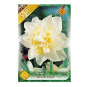 Bulbi de flori Narcisa White Lion 5buc