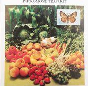 Capcana cu feromoni mar atraPOM - viermele merelor Cydia pomonella, 3buc