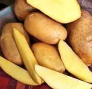 Cartofi de samanta Elfe 50 tuberculi