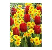 Bulbi de flori Lalele&Narcise Duo Cheerful Company 8buc
