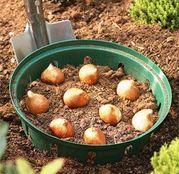 Cos pentru plantat bulbi