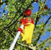 Culegator fructe RG-M, pivotant, cu coada - Wolf Garten