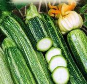 Seminte dovlecel zucchini Striato d'Italia 3g