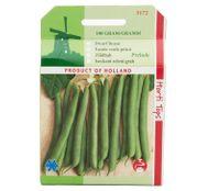 Seminte fasole verde fideluta pitica Prelude 100g