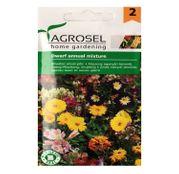 Seminte de flori mix pitice 3g