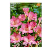 Bulbi de flori Frezii Single Pink 10buc