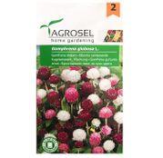 Seminte flori Gomfrena (Gomphrena globosa L.) mix 0,7g