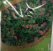 Seminte Lucerna Pomposa C1 1kg