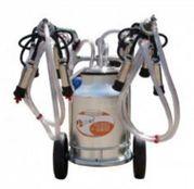 Mulgatoare de vaci EMT 2+1A30, 2 posturi, bidon aluminiu 30 L