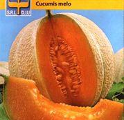 Seminte Pepene galben Ananas 2g