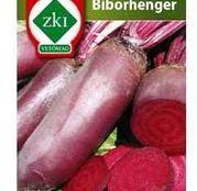 Seminte Sfecla rosie Biborhenger 4g