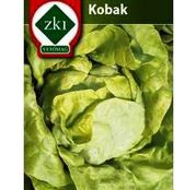 Seminte Salata Kobak 3g