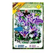 Bulbi de toamna Colectia Pure Nature Crocus+Puschkinia 14buc.