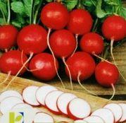 Seminte Ridichi de luna Cherry Belle 50 g