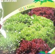 Seminte salata duo Lollo Bionda si Lollo Rosa 2x3g