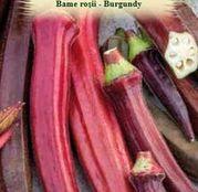 Seminte Bame rosii (Hibiscus esculentus) Burgundy 3g
