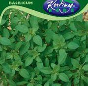 Seminte Busuioc cu aroma de lamaie 1g
