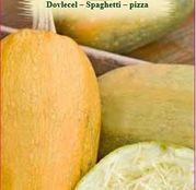 Seminte Dovlecel Spaghetti - Pizza 2g