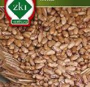 Seminte Fasole Uscata Inka 100g