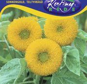 Seminte flori Floarea Soarelui decorativa SonnenGold inalta (Helianthus annuus)  2g