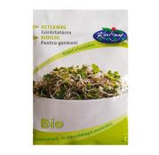 Seminte Ridichi BIO pentru germeni 30g