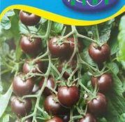 Seminte tomate Black Cherry 1/2g