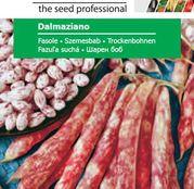Seminte fasole Dalmaziano ( 45g, 250g )